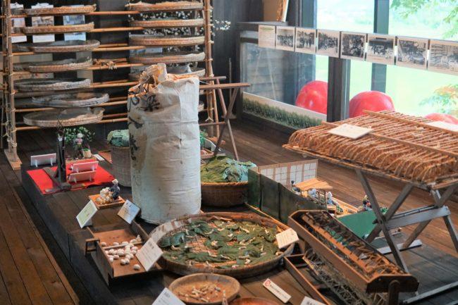 蚕の展示室