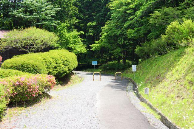 散歩コース入口