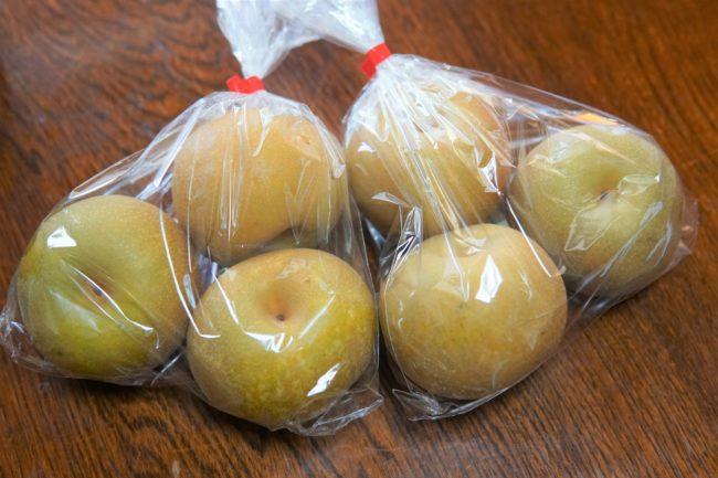 袋に入った梨