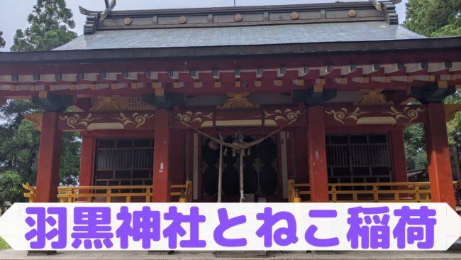 羽黒神社とねこ稲荷
